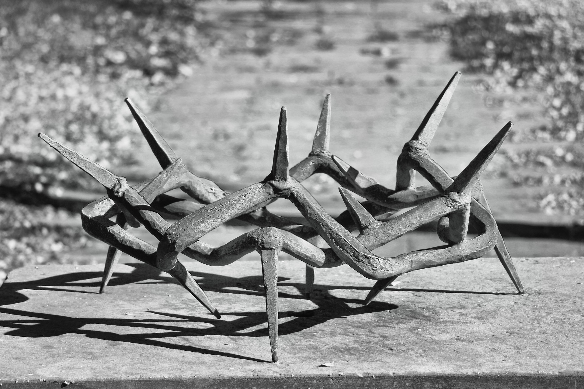 crown-of-thorns-3751860_1920